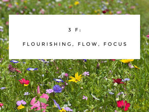 3F: Flourishing, Flow, Focus